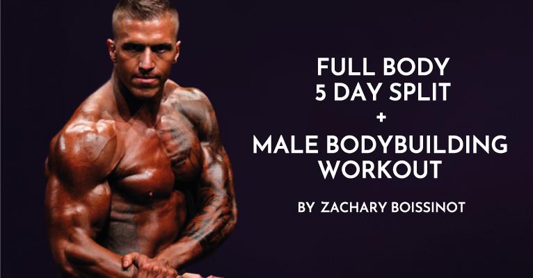 Full Body 5-day Split